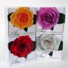 """ALCHIMIA: Rostlinné mydlo """"Ružová ruža"""" 125g"""